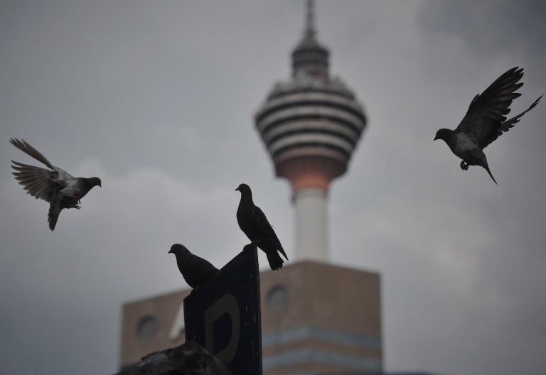 Pigeons flying away over Malaysia landmark Kuala Lumpur Tower in Kuala Lumpur, Malaysia on October 16, 2013. Pigeons and doves constitute the bird clade Columbidae, that includes some 310 species. They are stout-bodied birds with short necks, and have short, slender bills with fleshy ceres. Doves feed on seeds, fruits, and plants.  Photo: Firdaus Latif
