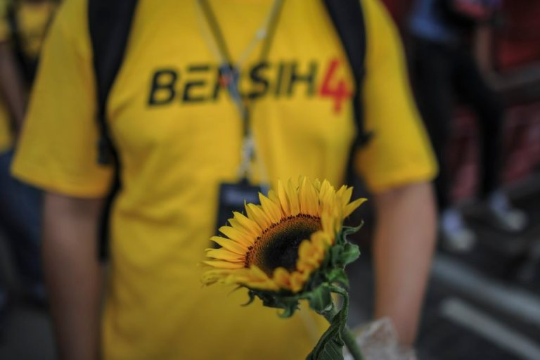 A protester holds a sun flower during  BERSIH 4.0 (The Coalition for Free and Fair Elections) in Kuala Lumpur on August 29, 2015. Photo by Firdaus Latif